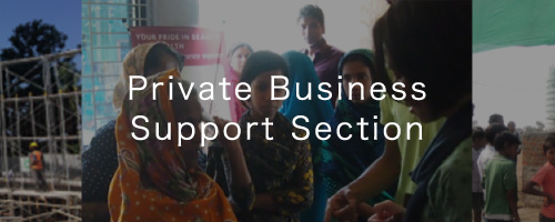 private business support section