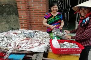 タインホア省沿岸部での魚の販売